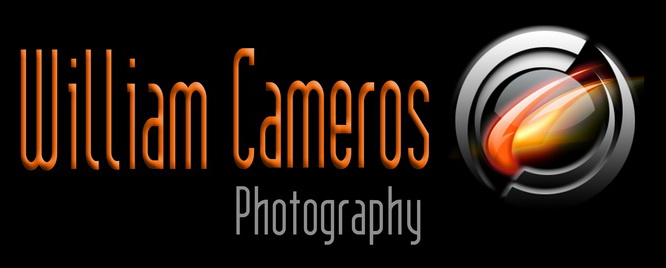 Logo William Cameros 2